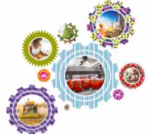 Tchad : Amplifier les réformes structurelles pour préserver la stabilité macroéconomique en 2017