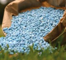 Tchad : l'exonération des intrants agricoles pourrait favoriser l'agriculture