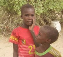 Indice Mondial de la Paix : Le Tchad impacté par la situation au Lac