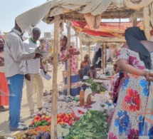 """Tchad : l'Assemblée nationale appelle à la diversification """"urgente"""" de l'économie"""