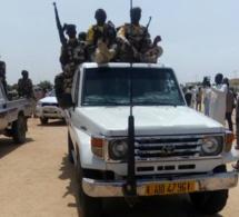 Tchad : quatre soldats tués au Lac dans une embuscade