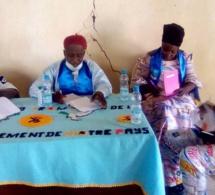 Tchad : Le MPS s'investit au Mayo Kebbi Ouest pour la réussite de la révision du fichier électoral