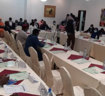 Tchad : la SONAMIG élabore un plan d'action quinquennal pour développer le secteur minier