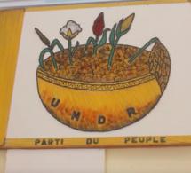 """Combattants tchadiens en RCA : l'UNDR demande au gouvernement d'aller """"au-delà du démenti"""""""