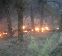 Tchad : un incendie fait des ravages à Mao