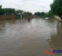 Tchad : L'UE alloue près de 230 millions FCFA d'aide aux victimes d'inondations