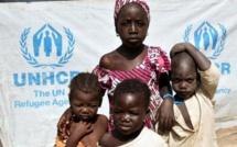 Lac Tchad : Les donateurs se réunissent à Oslo face à la grave crise humanitaire