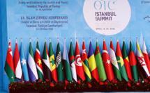 Le sommet de l'OCI en Turquie en 2016. © DR